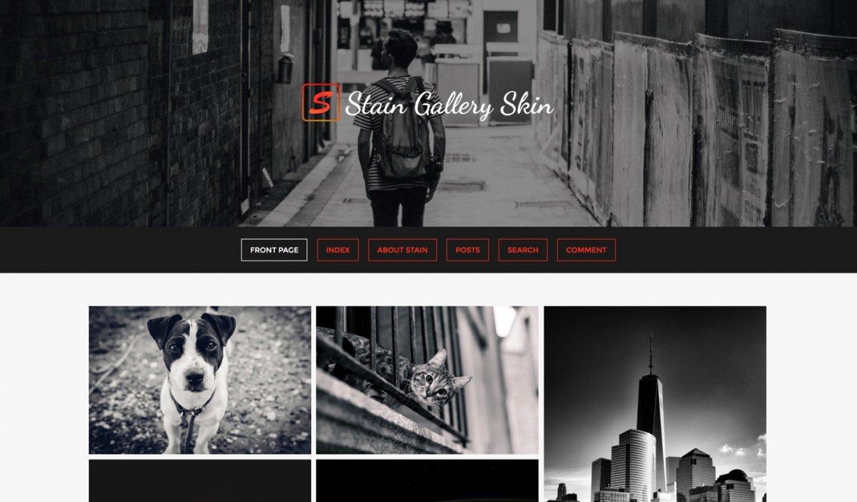 Stain Gallery/Portfolio Skin