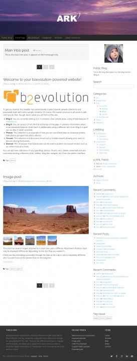 Ark Blog skin